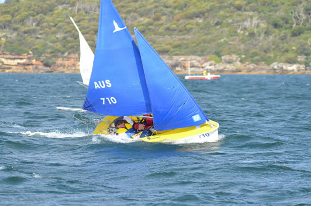 Hansa 303 Wide 2