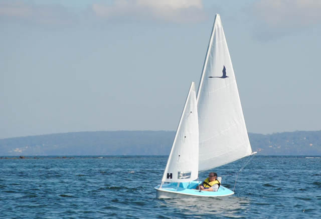 303 Breeze sailing
