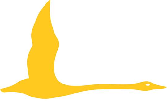 hansa-logo